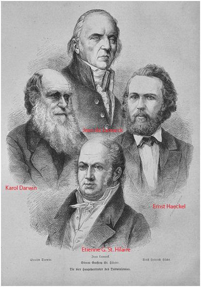 Sława ewolucji