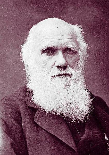 Czy Karol Darwin był socjaldarwinistą
