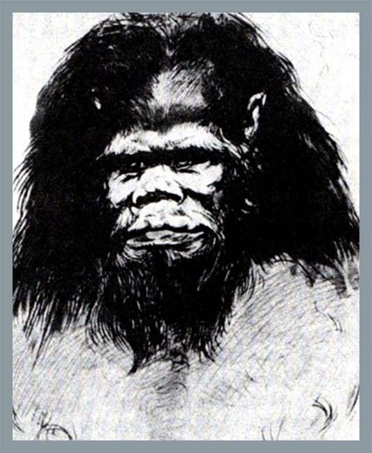 "Ernst Haeckel - ""niemiecki buldog"""